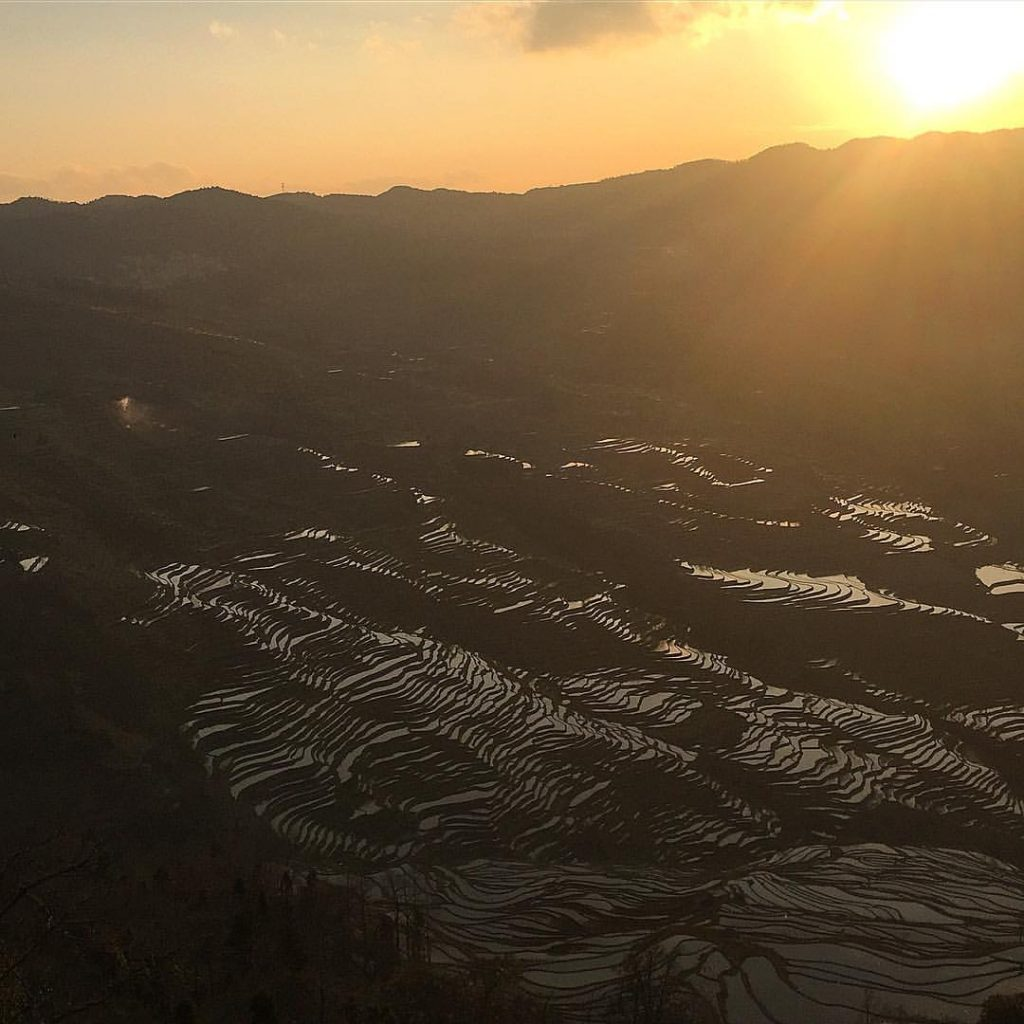 The magnificent Yuanyang rice terraces