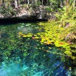 A Cenote