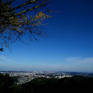 The view over Tokyo from Mt. Takao