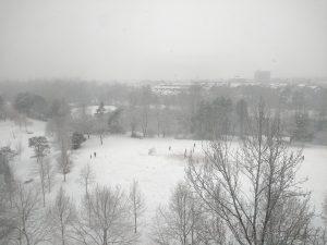 Snowy Darmstadt
