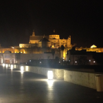 La Mezquita by Night