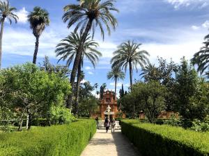 The Alcazar gardens in Seville